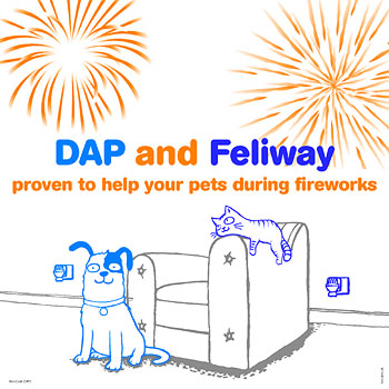 Cartoon of cat and dog looking happy as fireworks explode all around them