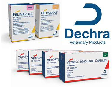 Dechra's Endocrinology expertise welcomed at BSAVA NI event